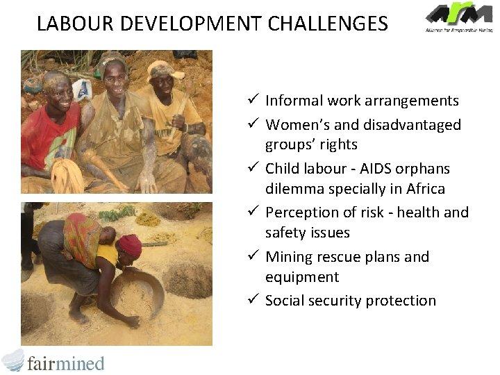 LABOUR DEVELOPMENT CHALLENGES ü Informal work arrangements ü Women's and disadvantaged groups' rights ü