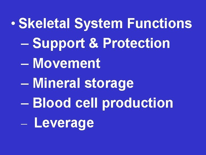 • Skeletal System Functions – Support & Protection – Movement – Mineral storage