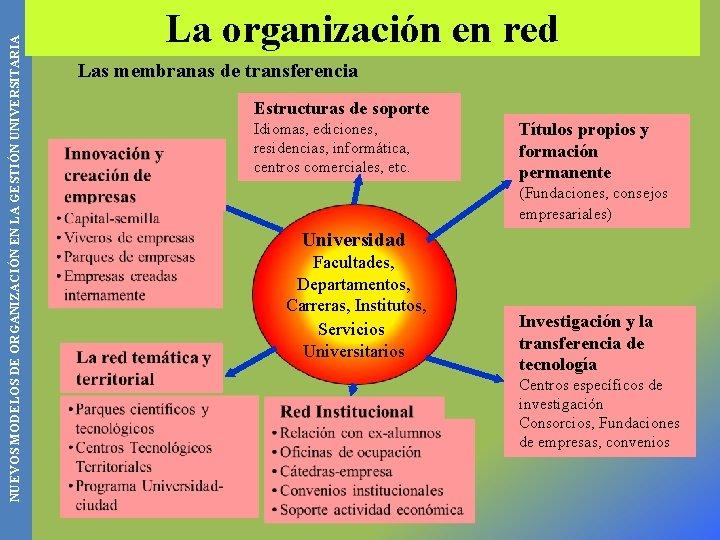 NUEVOS MODELOS DE ORGANIZACIÓN EN LA GESTIÓN UNIVERSITARIA La organización en red Las membranas