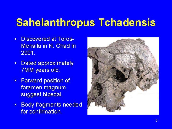 Sahelanthropus Tchadensis • Discovered at Toros. Menalla in N. Chad in 2001. • Dated