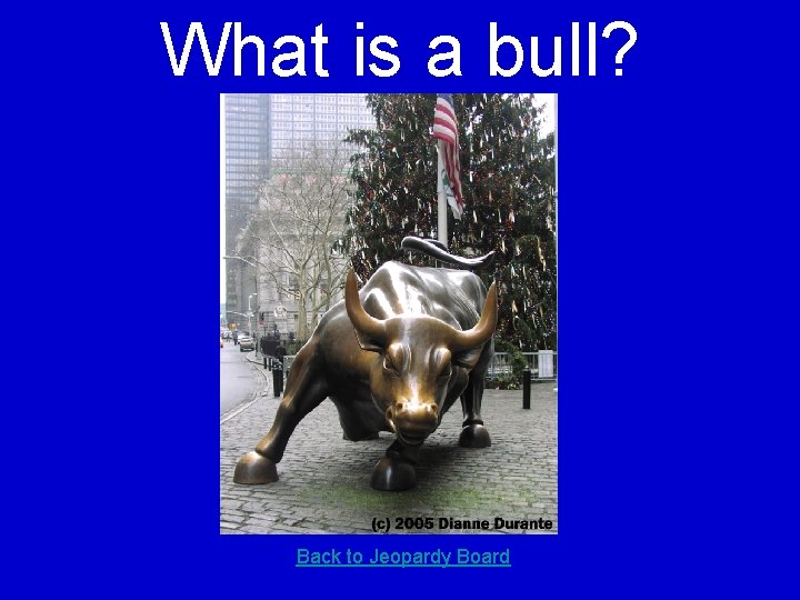What is a bull? Back to Jeopardy Board