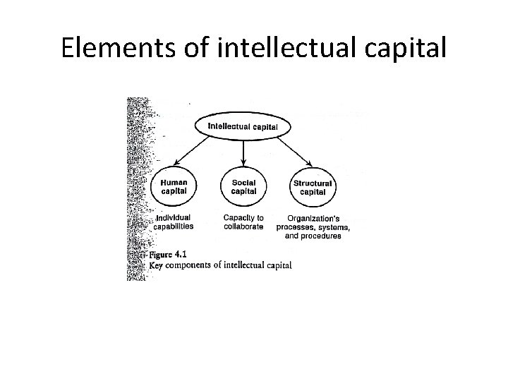 Elements of intellectual capital