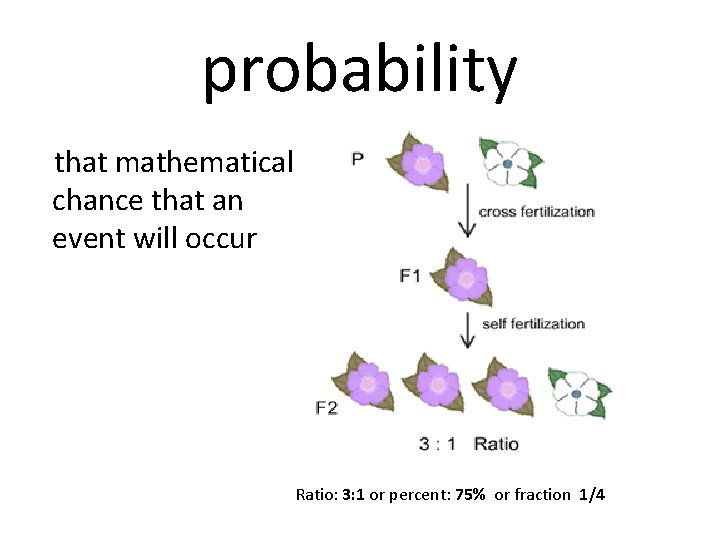 probability that mathematical chance that an event will occur Ratio: 3: 1 or percent: