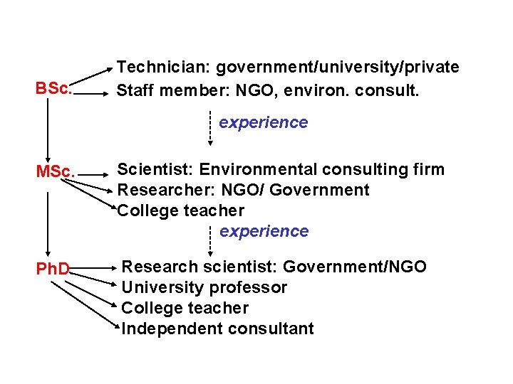 BSc. Technician: government/university/private Staff member: NGO, environ. consult. experience MSc. Scientist: Environmental consulting firm