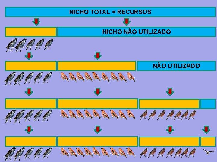 NICHO TOTAL = RECURSOS NICHO NÃO UTILIZADO
