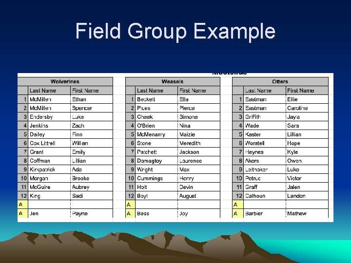 Field Group Example