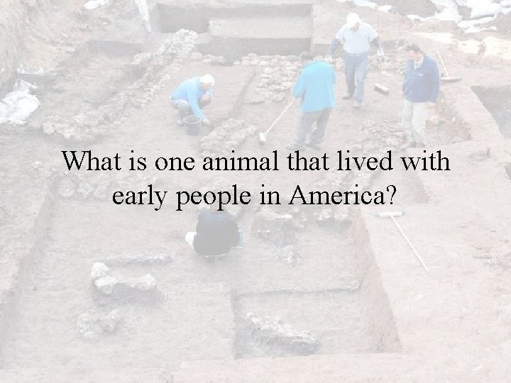 What is one animal that lived with early people in America?