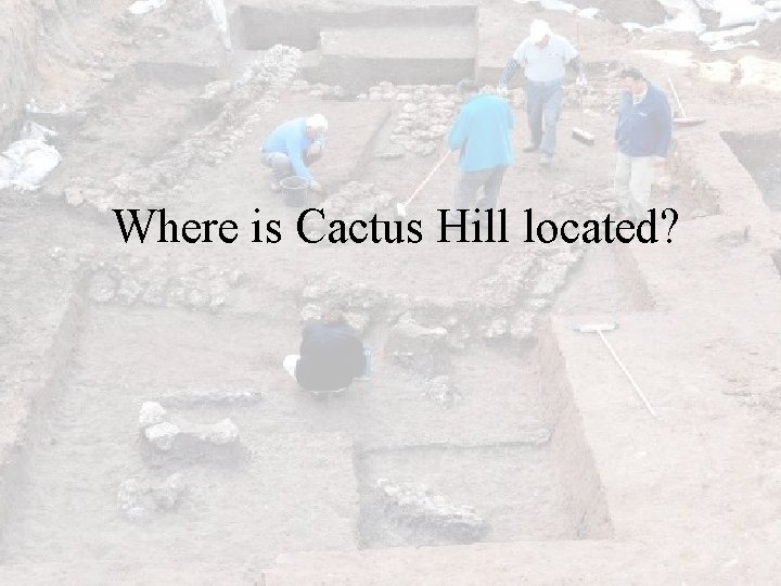Where is Cactus Hill located?