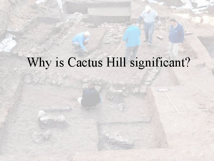 Why is Cactus Hill significant?