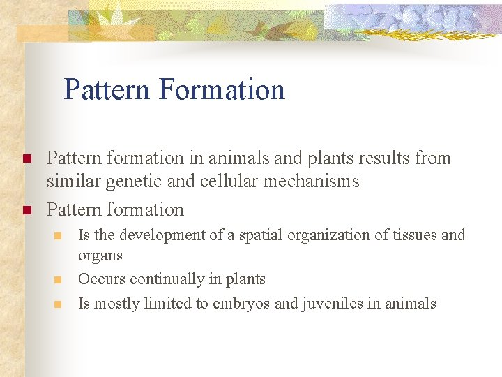 Pattern Formation n n Pattern formation in animals and plants results from similar genetic