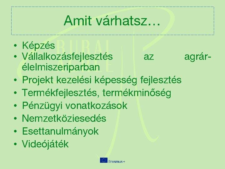 Projektkezelési módszerek)