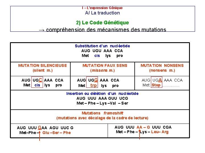 U. M. F IAŞI I – L'expression Génique A/ La traduction 2) Le Code