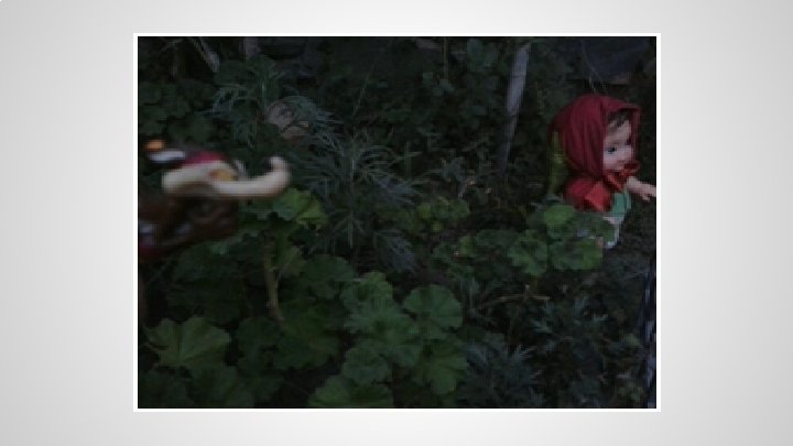 Caperucita Roja El Lado Oscuro Del Bosque Introduccin