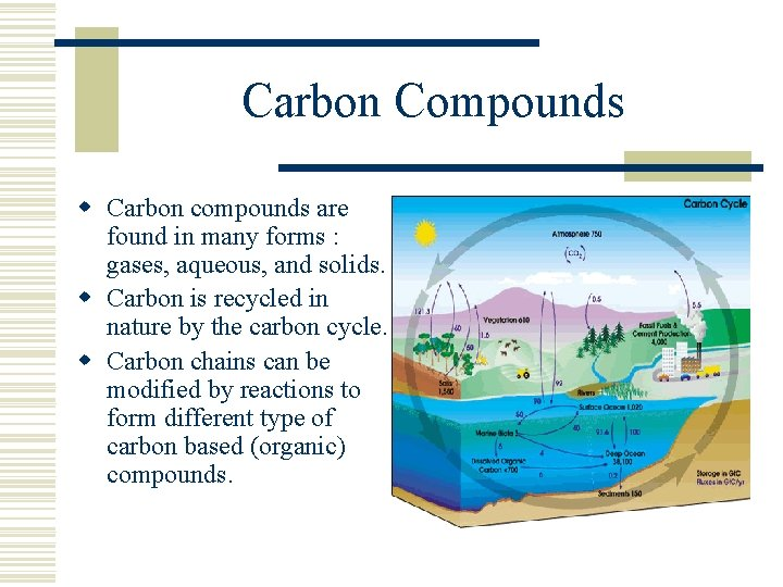 Carbon Compounds w Carbon compounds are found in many forms : gases, aqueous, and