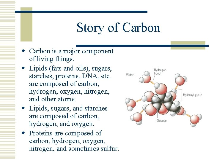 Story of Carbon w Carbon is a major component of living things. w Lipids