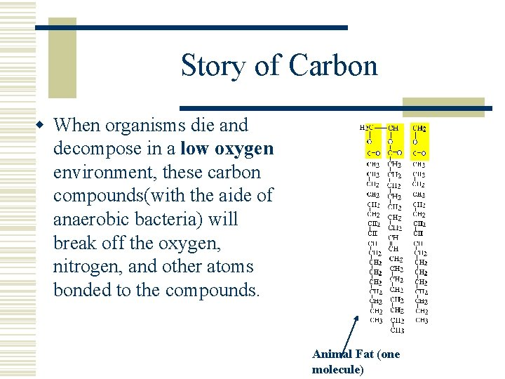 Story of Carbon w When organisms die and decompose in a low oxygen environment,