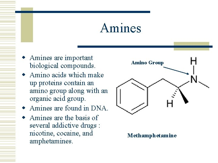Amines w Amines are important biological compounds. w Amino acids which make up proteins