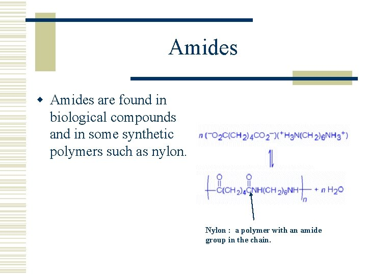 Amides w Amides are found in biological compounds and in some synthetic polymers such