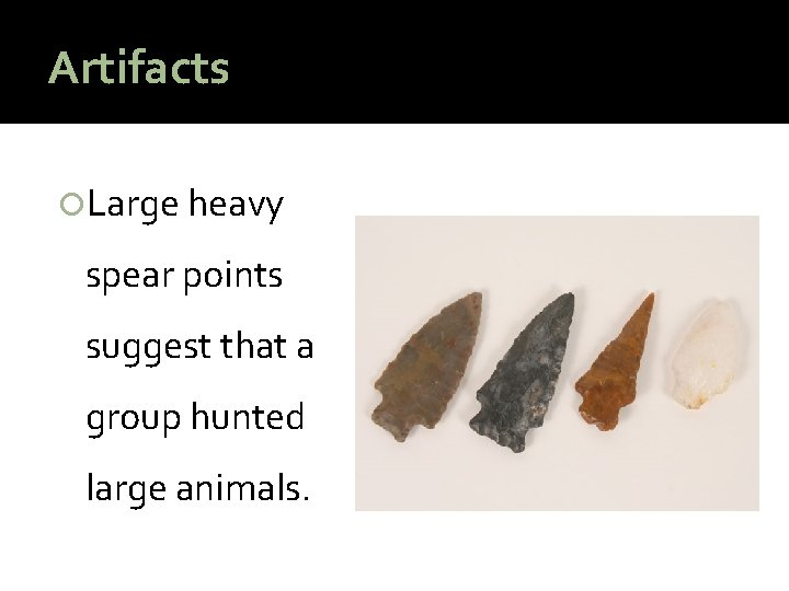 Artifacts Large heavy spear points suggest that a group hunted large animals.