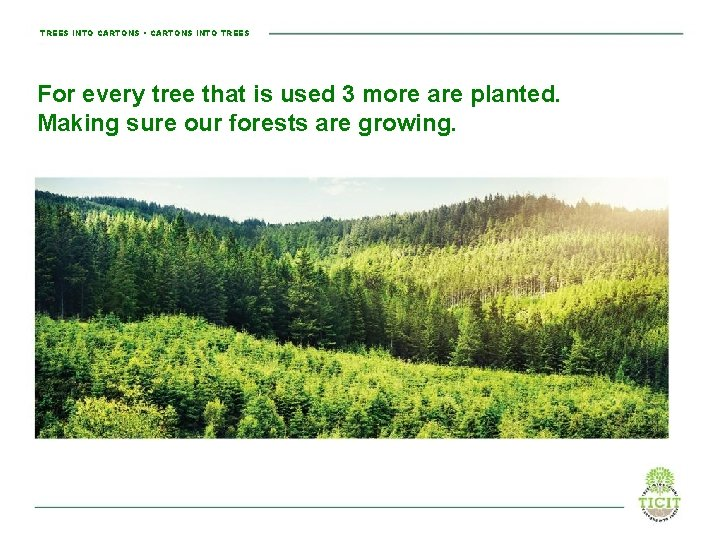 TREES INTO CARTONS • CARTONS INTO TREES For every tree that is used 3