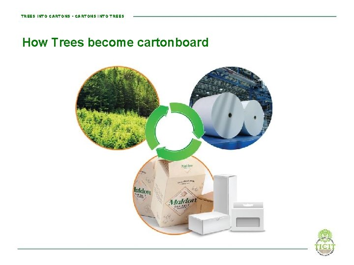 TREES INTO CARTONS • CARTONS INTO TREES How Trees become cartonboard