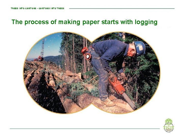 TREES INTO CARTONS • CARTONS INTO TREES The process of making paper starts with