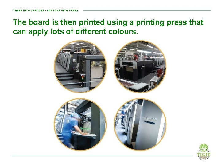 TREES INTO CARTONS • CARTONS INTO TREES The board is then printed using a