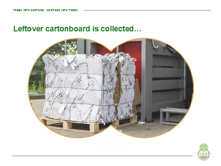 TREES INTO CARTONS • CARTONS INTO TREES Leftover cartonboard is collected…