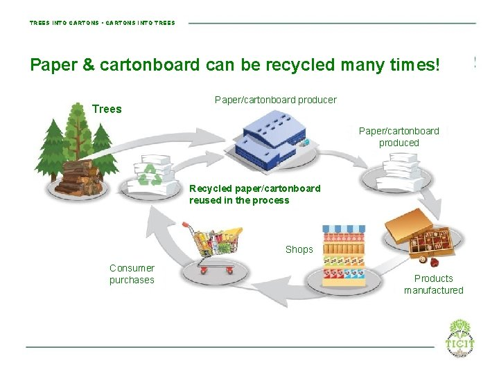 TREES INTO CARTONS • CARTONS INTO TREES Paper & cartonboard can be recycled many