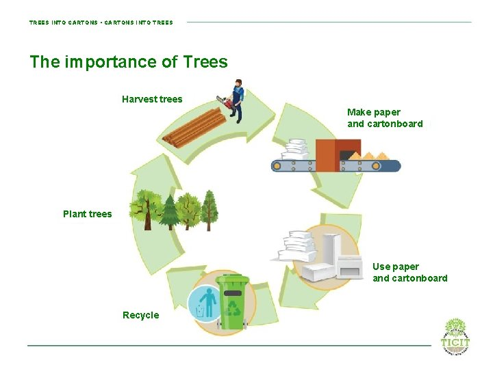 TREES INTO CARTONS • CARTONS INTO TREES The importance of Trees Harvest trees Make