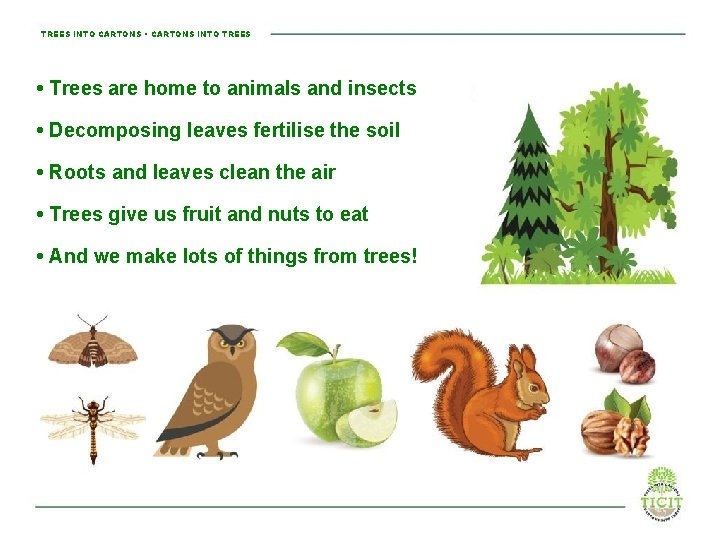 TREES INTO CARTONS • CARTONS INTO TREES • Trees are home to animals and