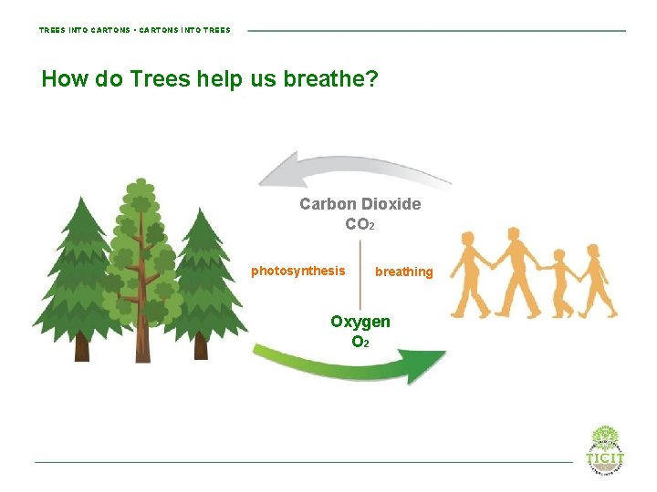 TREES INTO CARTONS • CARTONS INTO TREES How do Trees help us breathe? Carbon