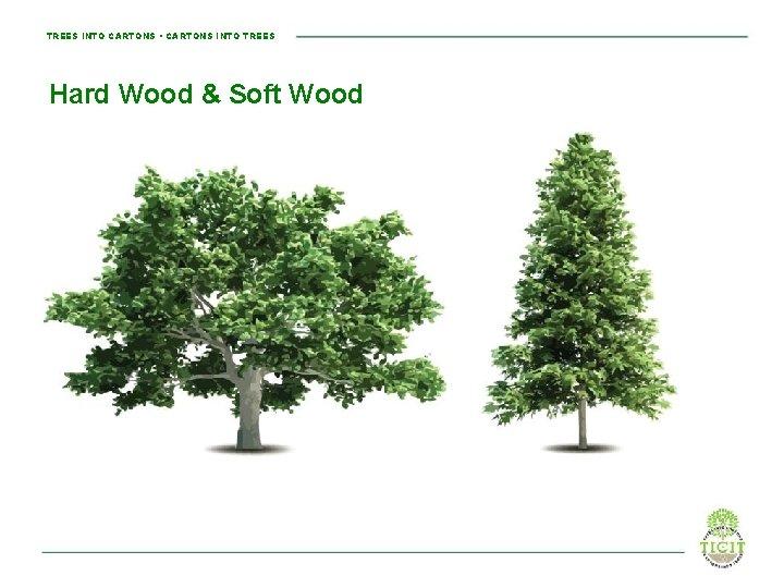 TREES INTO CARTONS • CARTONS INTO TREES Hard Wood & Soft Wood