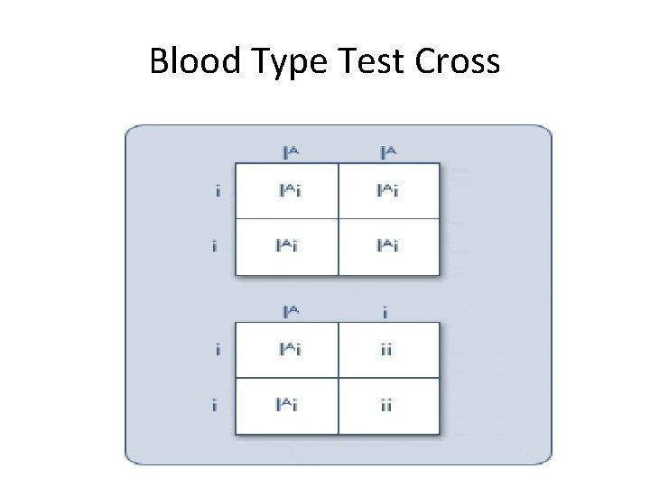 Blood Type Test Cross