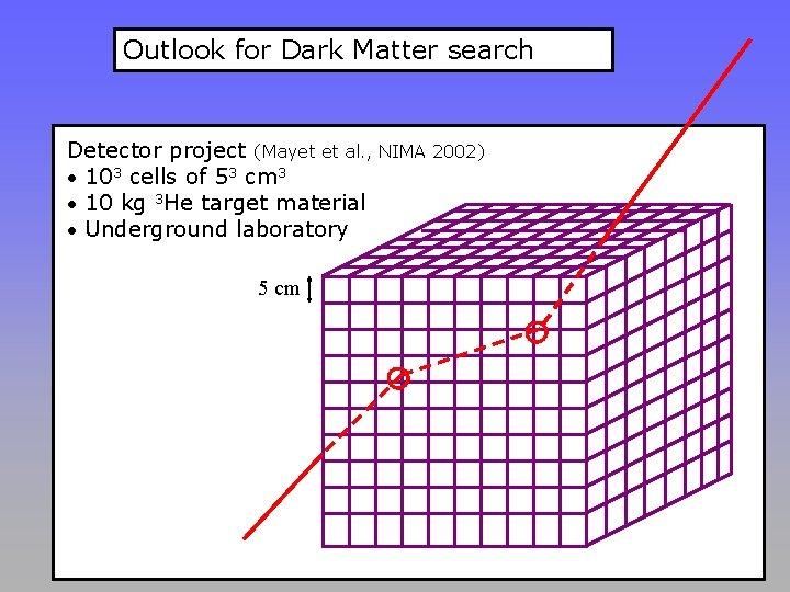Outlook for Dark Matter search Detector project (Mayet et al. , NIMA 2002) •