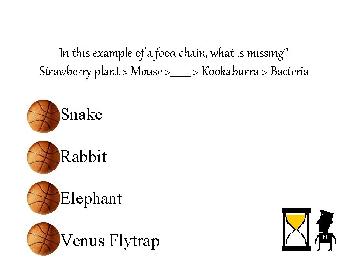In this example of a food chain, what is missing? Strawberry plant > Mouse