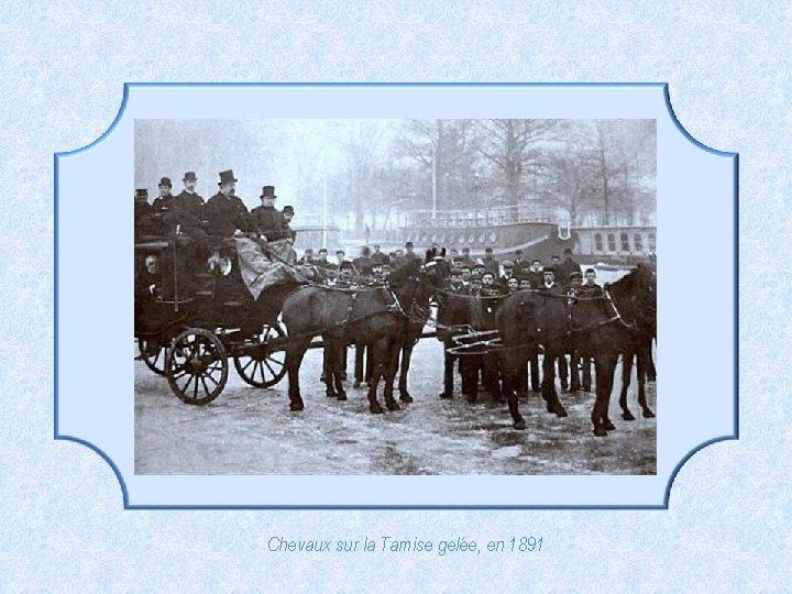 Chevaux sur la Tamise gelée, en 1891