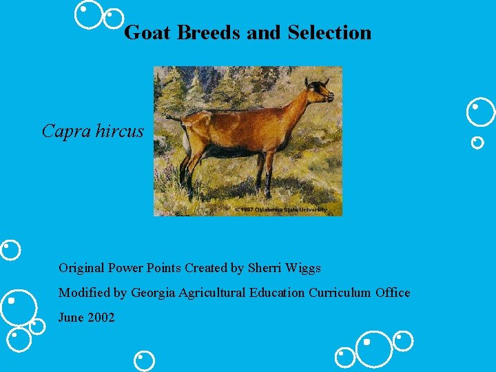 Goat Breeds and Selection Capra hircus Original Power Points Created by Sherri Wiggs Modified