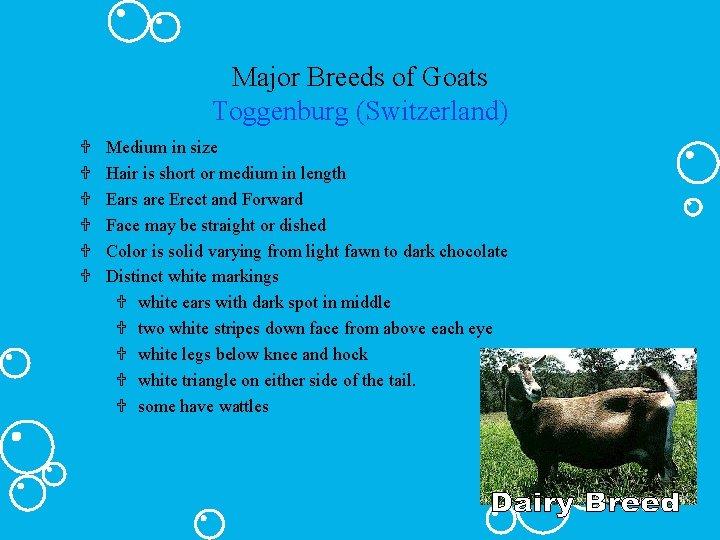 Major Breeds of Goats Toggenburg (Switzerland) U U U Medium in size Hair is