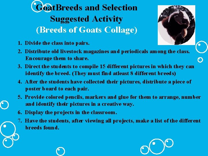 Goat. Breeds and Selection Suggested Activity (Breeds of Goats Collage) 1. Divide the class