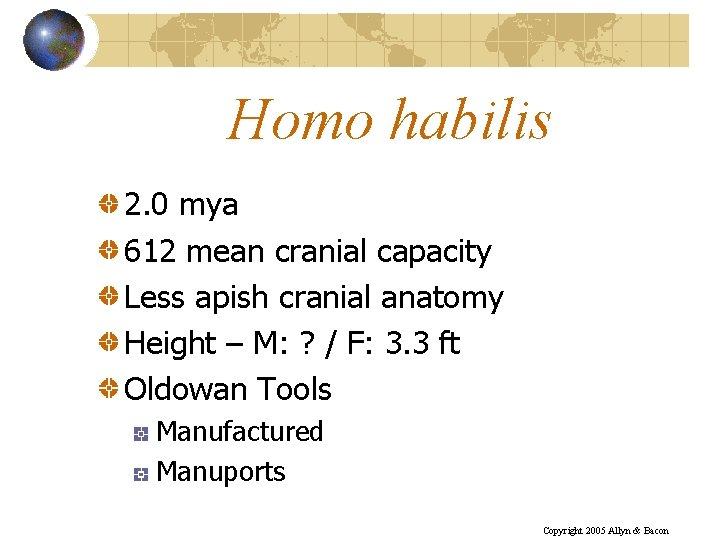 Homo habilis 2. 0 mya 612 mean cranial capacity Less apish cranial anatomy Height