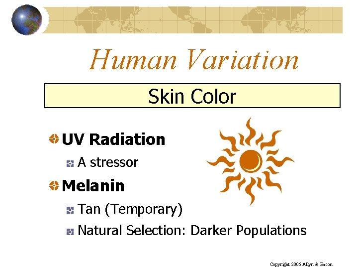 Human Variation Skin Color UV Radiation A stressor Melanin Tan (Temporary) Natural Selection: Darker