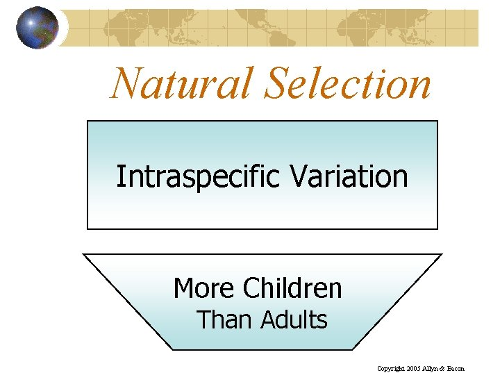Natural Selection Intraspecific Variation More Children Than Adults Copyright 2005 Allyn & Bacon