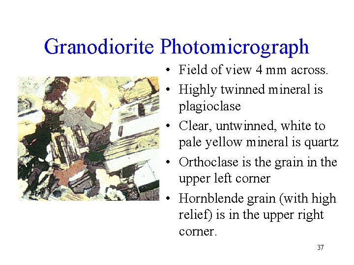Granodiorite Photomicrograph • Field of view 4 mm across. • Highly twinned mineral is