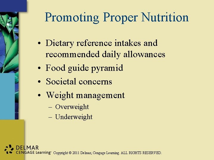 Promoting Proper Nutrition • Dietary reference intakes and recommended daily allowances • Food guide