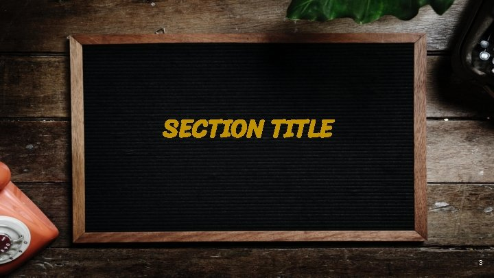 SECTION TITLE 3
