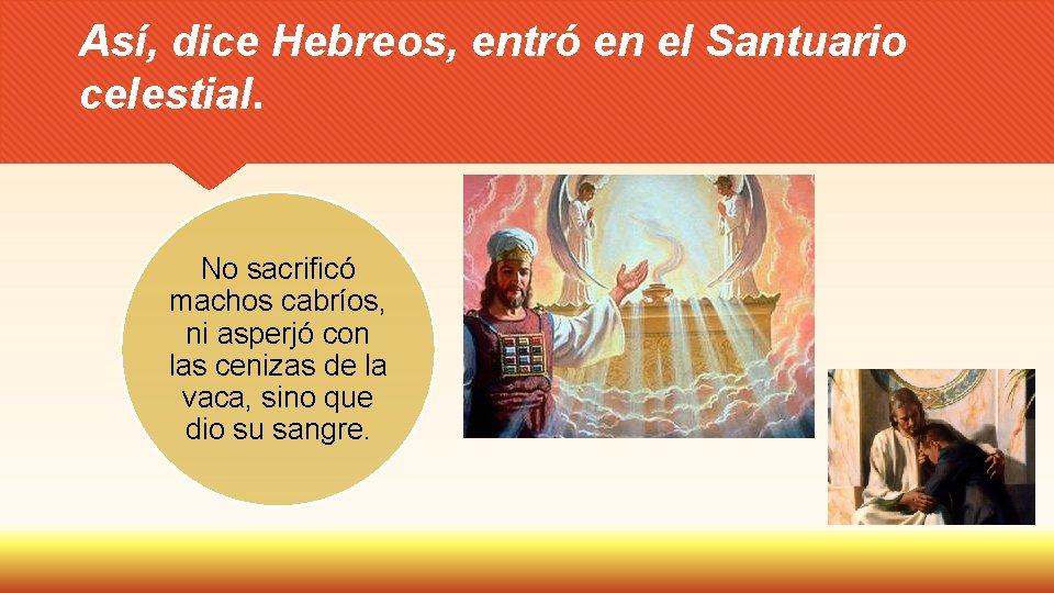 Así, dice Hebreos, entró en el Santuario celestial. No sacrificó machos cabríos, ni asperjó