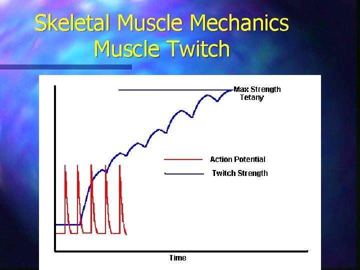 Skeletal Muscle Mechanics Muscle Twitch