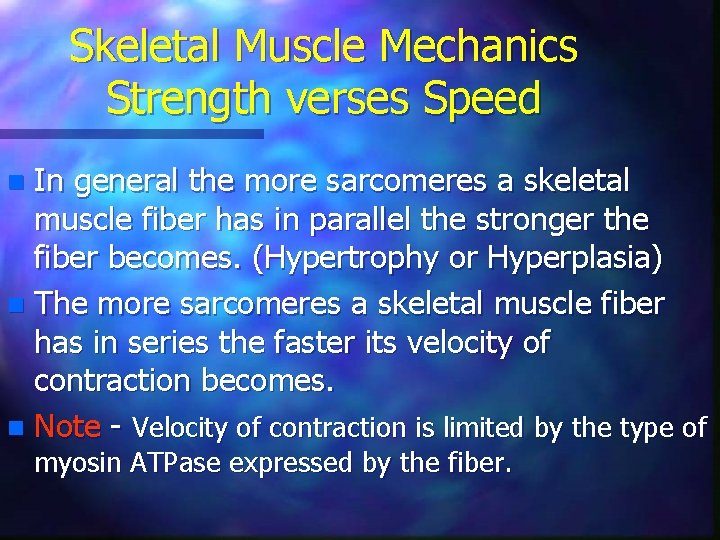 Skeletal Muscle Mechanics Strength verses Speed In general the more sarcomeres a skeletal muscle