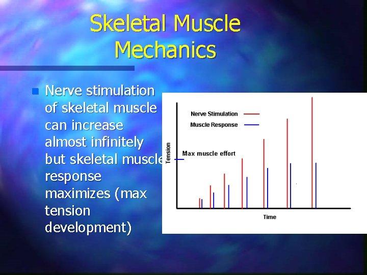 Skeletal Muscle Mechanics n Nerve stimulation of skeletal muscle can increase almost infinitely but